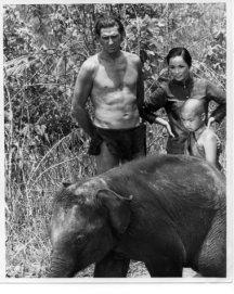 Jock Mahoney as Tarzan